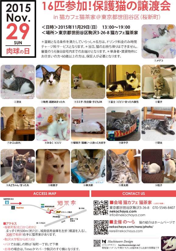 猫茶家譲渡会1129_ver2_A4