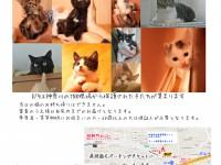 20150809告知ポスター案2
